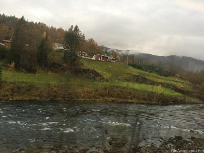 Paisaje de Bergen a Voss
