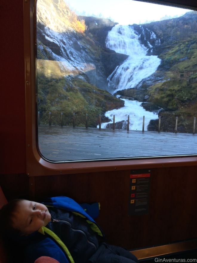 Copito relajándose enfrente de la cascada Kjosfossen