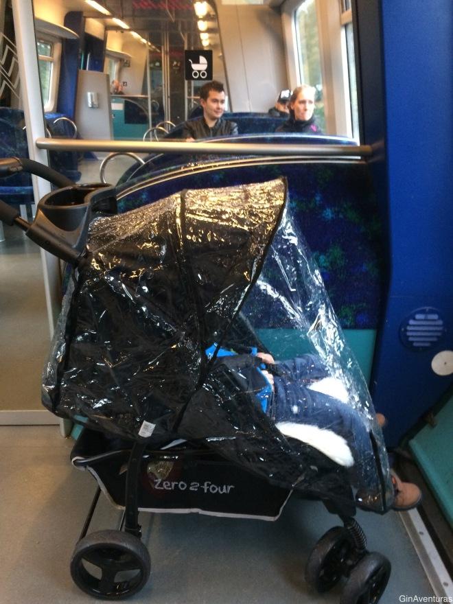 Copito haciendo siesta en el tren a Hillerod
