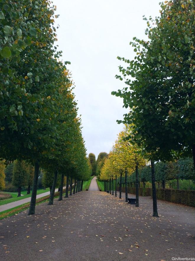 Árboles perfectamente alineados