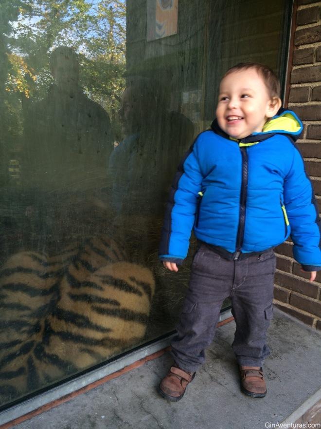 Feliz de estar junto a un tigre