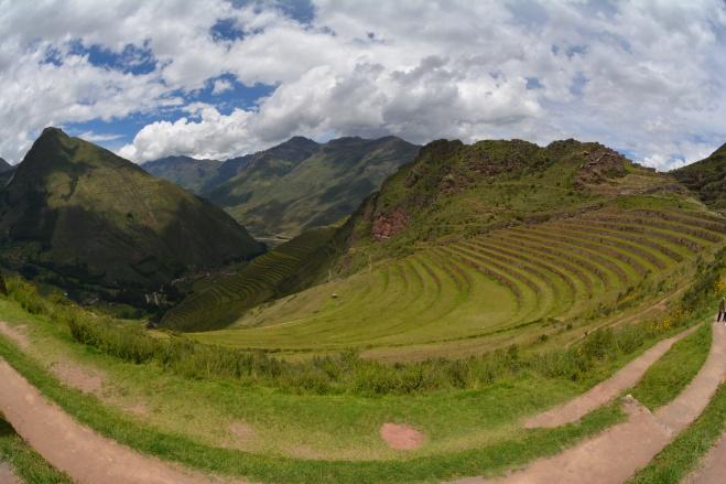 Terrazas de agricultura