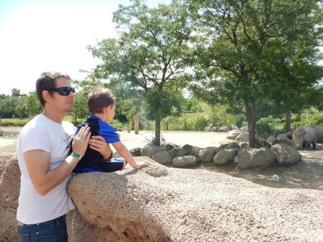 Zona de rinocerontes