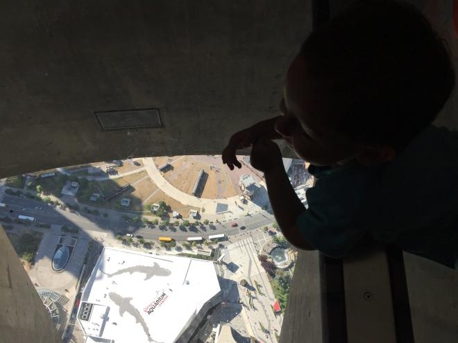 Observando desde el Glass Floor