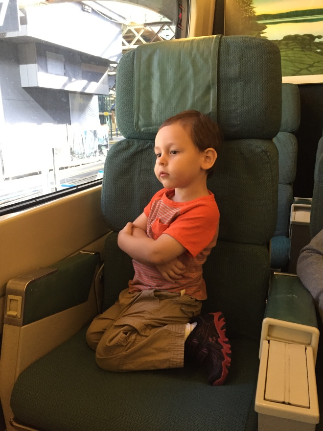 Copito viendo la ciudad desde el tren a Montreal
